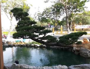 Công trình cha cafe số 1 Nguyễn văn linh Đà nẵng